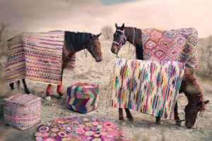 Horses modeling rugs from The Rug Republic